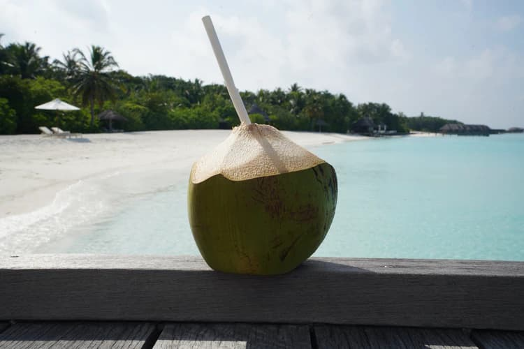 How to Consume Coconut Water